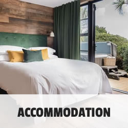 Accommodation Button Mb 2