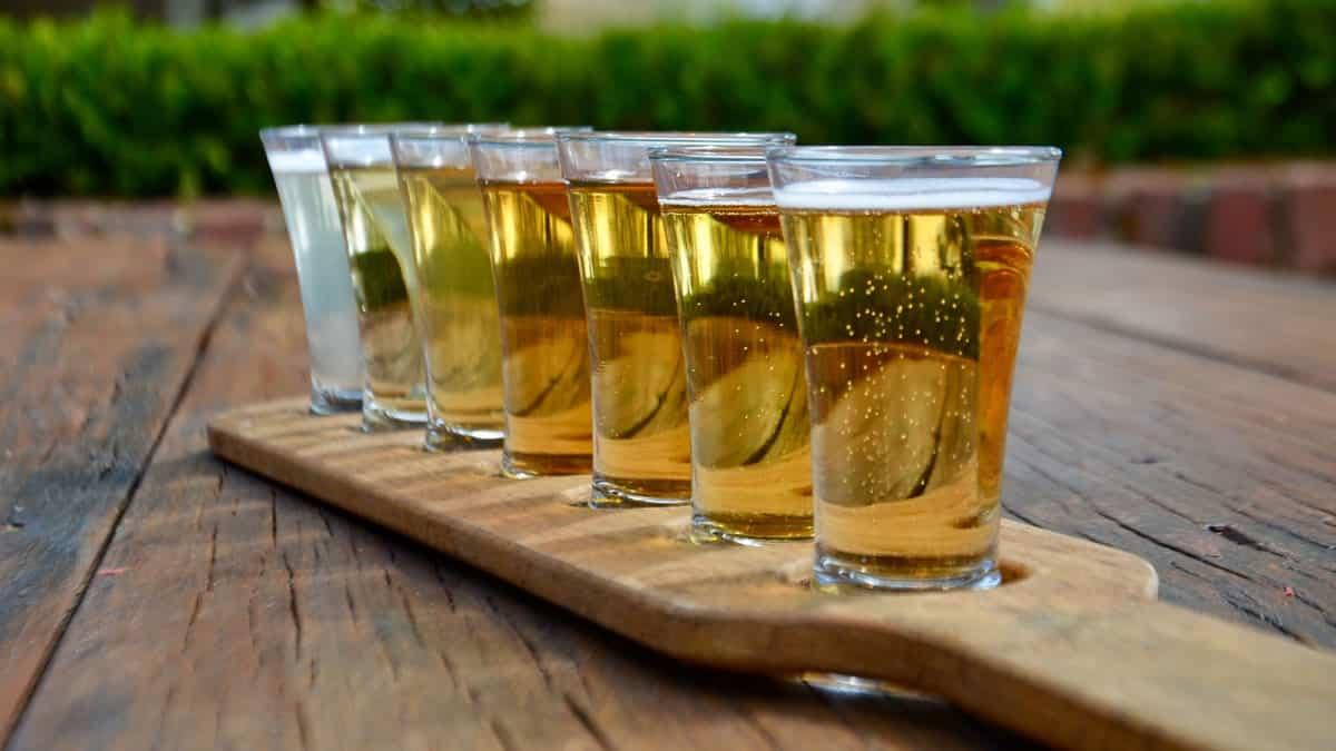 Cider Tasting Hero
